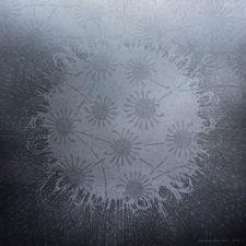 Silver Burst w Mites - var 1 1/1. woodcut, 3'x3'