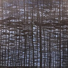 Woodland Landscape VII-Study B, L, 1/1, woodcut, 3'x3'
