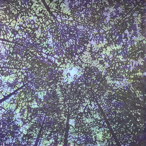 Woodland Skyscape - var. 120, 1/1, woodcut, 3'x3'
