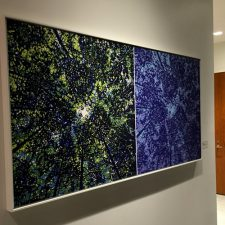 Ensemble: Woodland Skyscapes. Corporate Installation, Washington DC