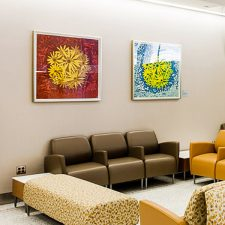 Bloom 41 and Jaune Bloom. Ronald O. Perelman Department of Emergency Medicine, NYU Langone Medical Center Art Program and Collection. Photograph by Carlos René Pérez