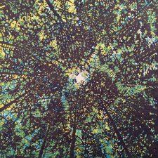 Woodland Skyscape - var. 55, 1/1, woodcut, 3'x3'