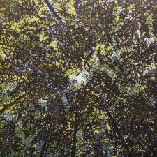 Woodland Skyscape - var. 76, 1/1. woodcut, 3'x3'