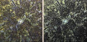 Woodland Skyscape - var. 76,1/1 & Woodland Skyscape - var. 90, 1/1. woodcut, (2) 3'x3'