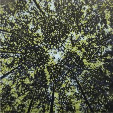 Woodland Skyscape - var. 90, 1/1. woodcut, 3'x3'