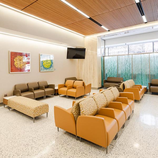 Eve Stockton Art Installation at NYU Langone Medical Center