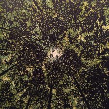 Woodland Skyscape - var. 1, 1/1, woodcut, 3'x3'