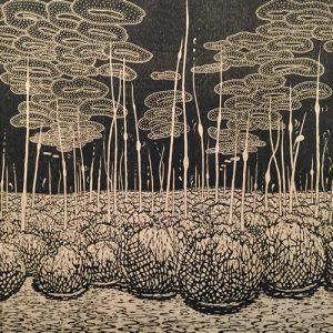 Evolutionary Landscape, TP, 1/1, woodcut, 3'x3' black key on tea-soaked paper